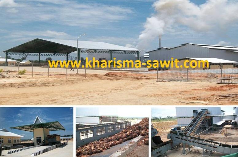 Seluk Beluk Kontraktor Pabrik Kelapa Sawit