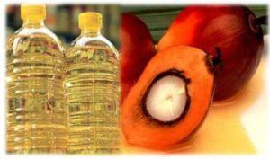 Rendemen Minyak Kelapa Sawit yang Dihasilkan oleh Pabrik Sawit