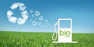 bagaimana-Cara Membuat Biodiesel Dari Kelapa Sawit
